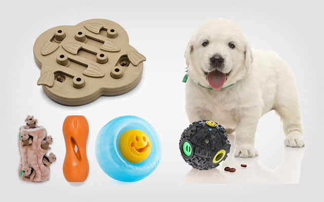 The Best Dog Puzzle Toys for Dogs This Winter