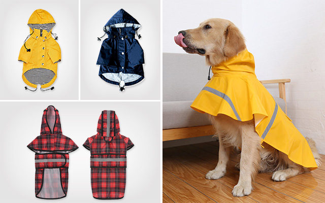 Best Dog Raincoats in 2019 – Keep Your Dog Dry in the Cloudy Days