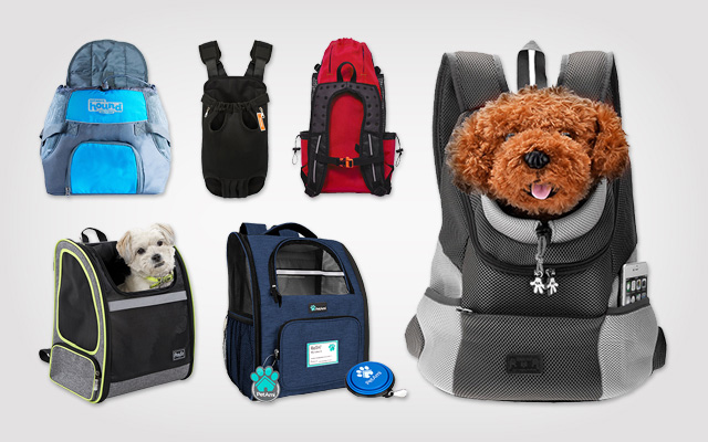 10 Best Dog Carrier Backpacks – You Should Not Miss Out