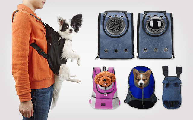 10 Best Motorcycle Dog Carriers in 2019