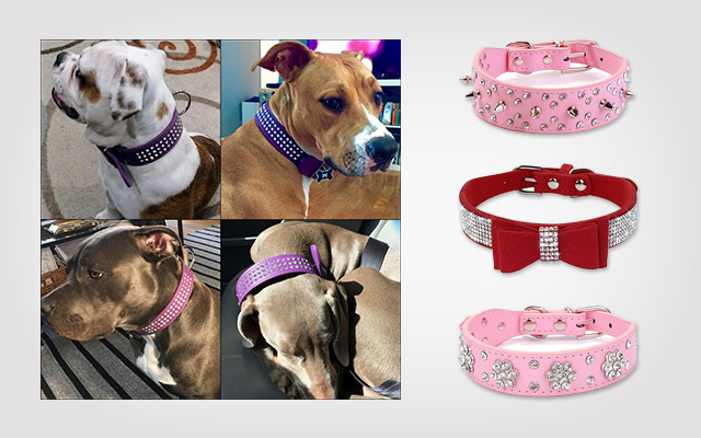 Top 10 Rhinestone Dog Collars In 2019