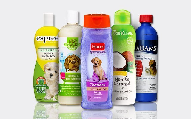 Best Puppy Shampoo For Your Furry Best Friends in 2019