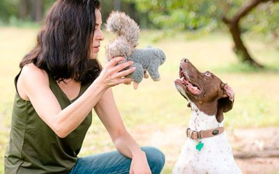 Best Squirrel Dog Toys in 2019 – Keep Them Exciting in Their Playtimes