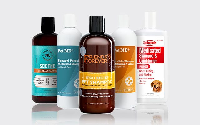 The Best Dog Shampoo For Itching in 2019