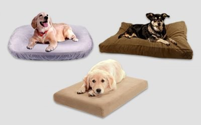 10 Best Dog Bed Covers of 2019