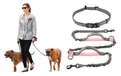 9 Best Hands-Free Dog Leash for Walking and Running with Your Dogs