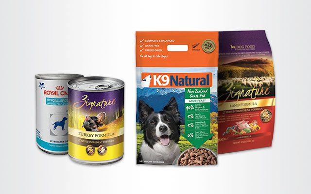 Best Hypoallergenic Dog Foods for Sensitive Dogs