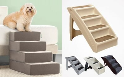 The Best Dog Stairs And Ramps in 2019 [ Buying Guide ]
